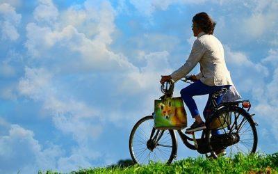 Green Ways to Work – ein ausgezeichnetes KUMAS Leitprojekt